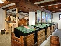 Niedernsill   Noriker Pferdemuseum