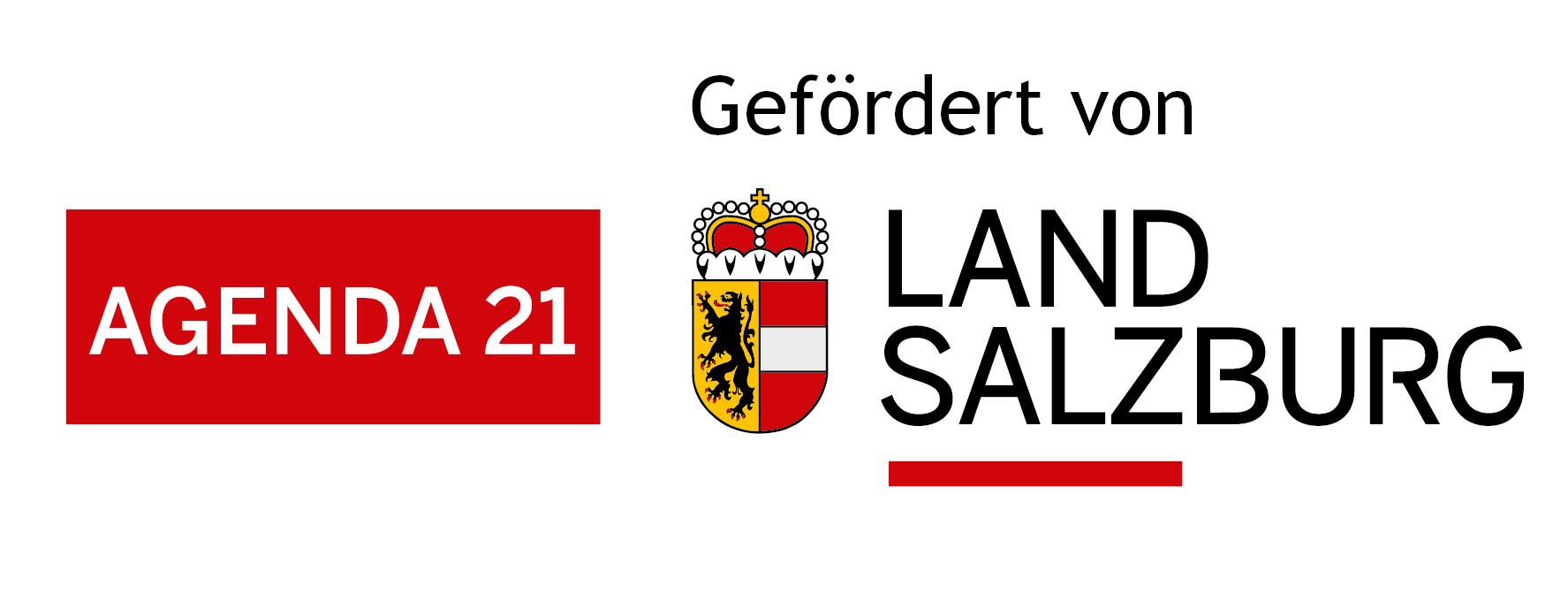Land Salzburg - Logos und Vorlagen